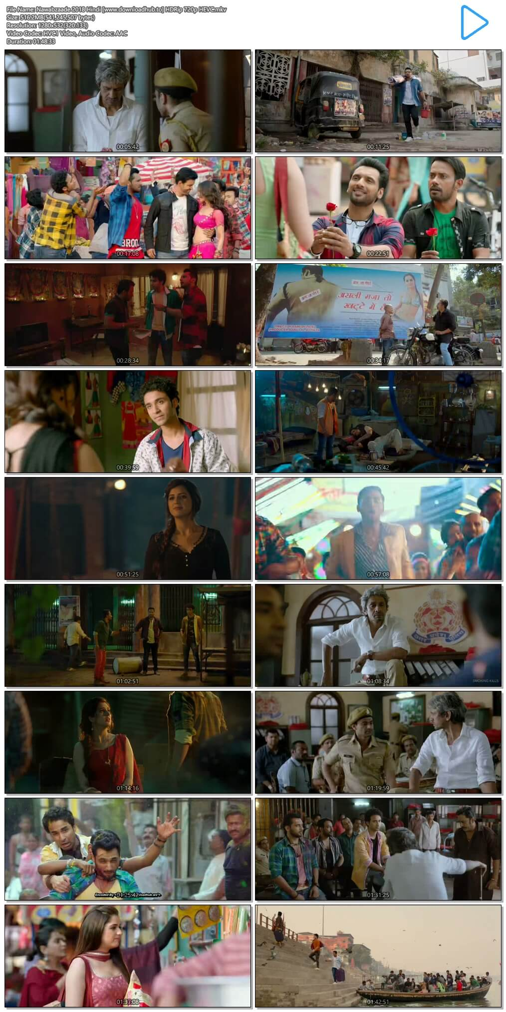 Nawabzaade 2018 Hindi 500MB HDRip 720p HEVC