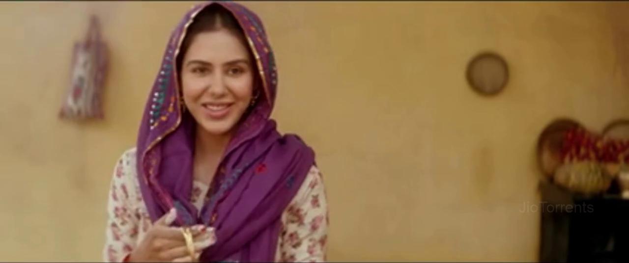 Nikka Zaildar 2 (2017) Punjabi - 720p - HDRip - x264 - AACTeamDHB