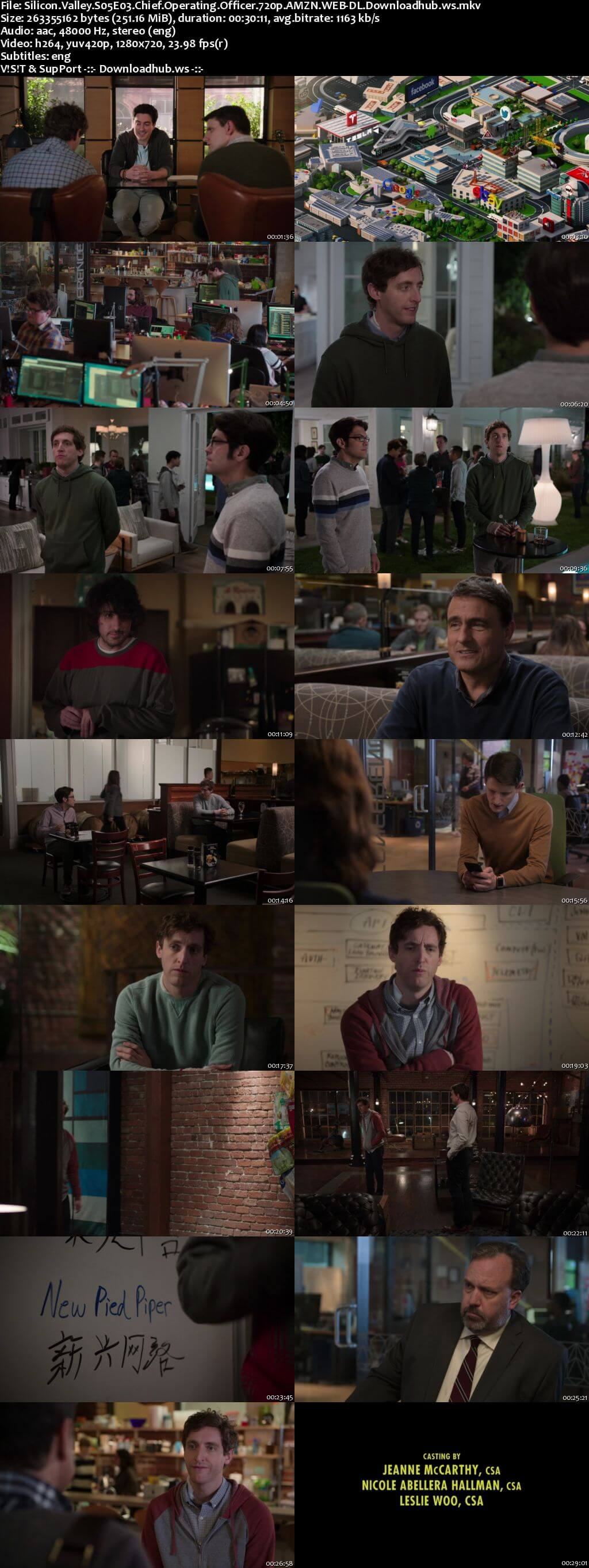 Silicon Valley S05E03 250MB WEBRip 720p x264