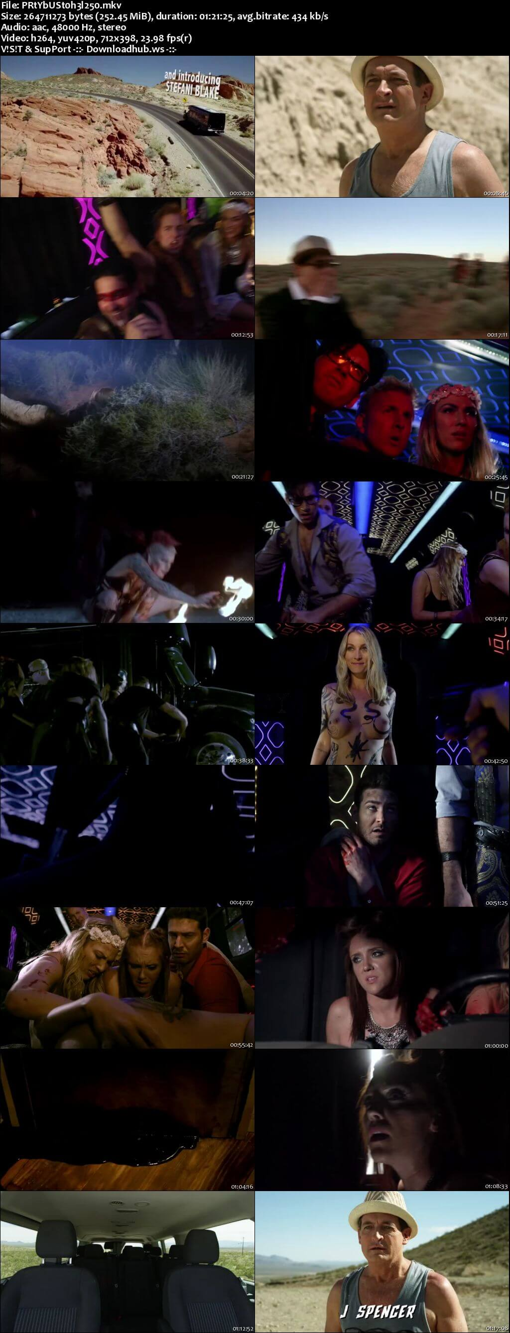 Party Bus to Hell 2017 English 480p Web-DL