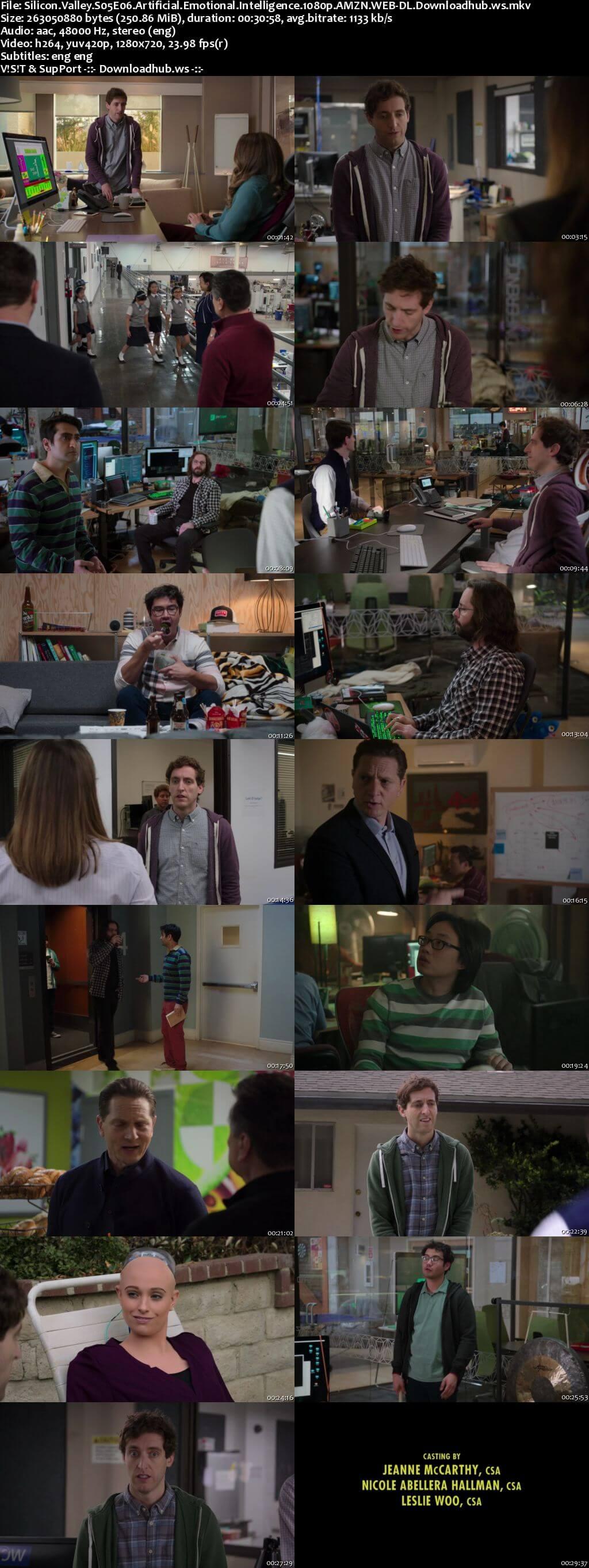 Silicon Valley S05E06 250MB WEBRip 720p x264