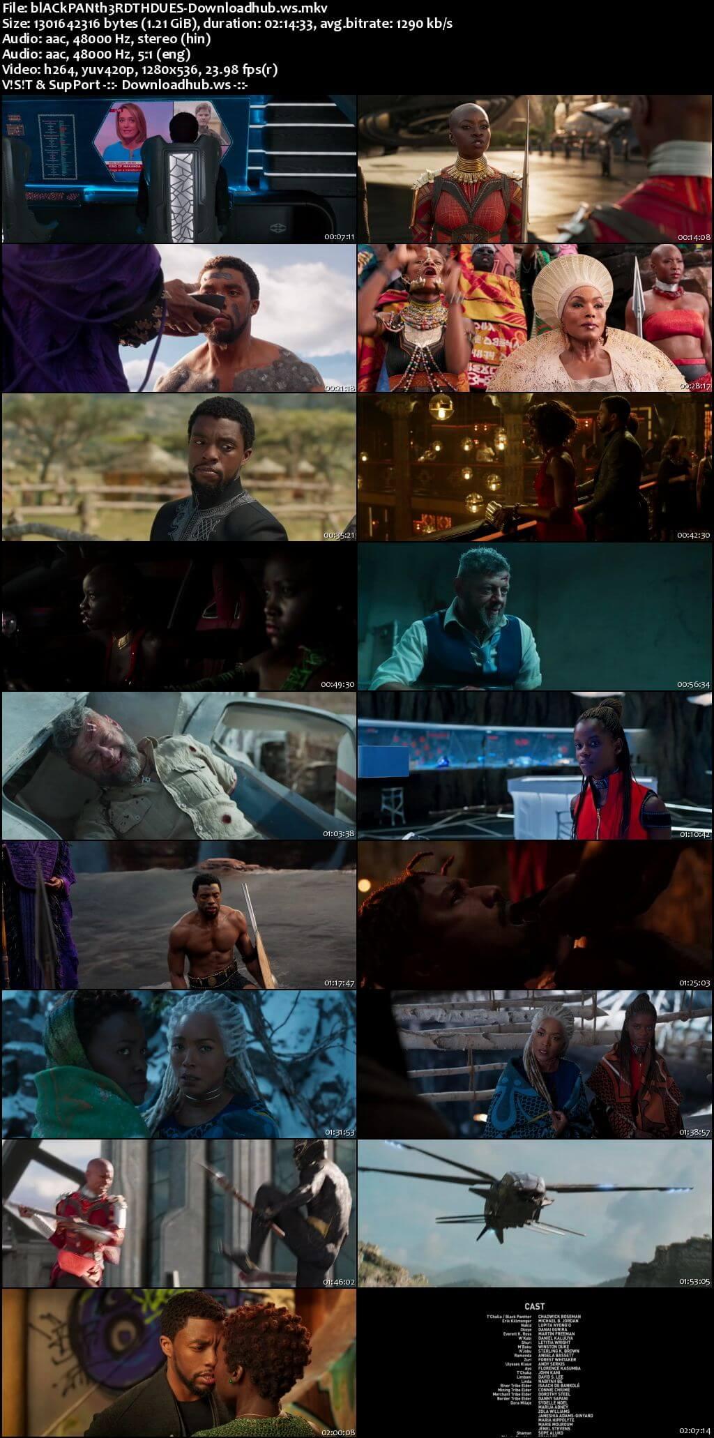 Black Panther 2018 Hindi Dual Audio 720p BluRay Free Download