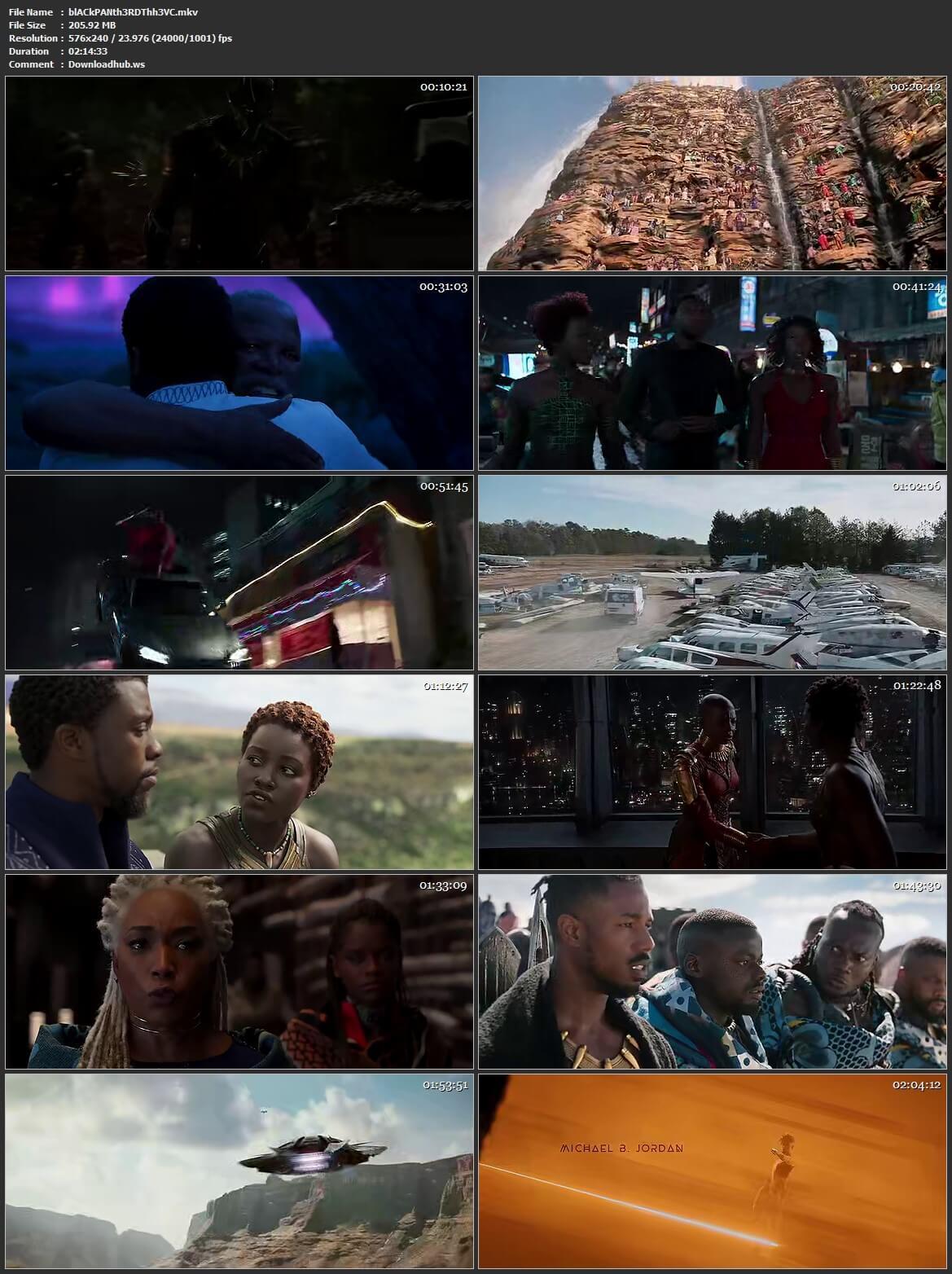 Black Panther 2018 Hindi Dual Audio HEVC 480p BluRay Free Download