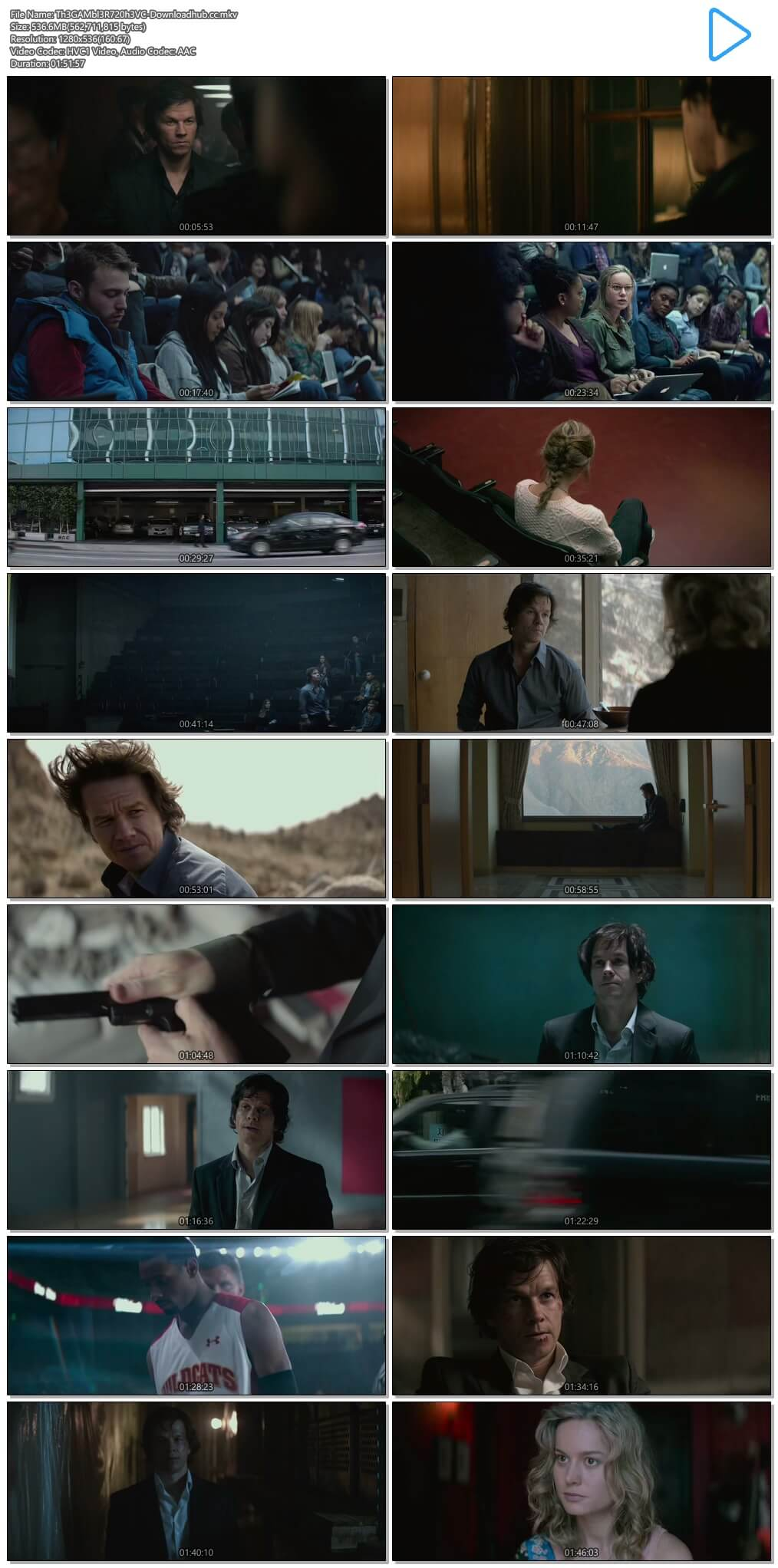The Gambler 2014 Hindi Dual Audio 500MB BluRay 720p ESubs HEVC