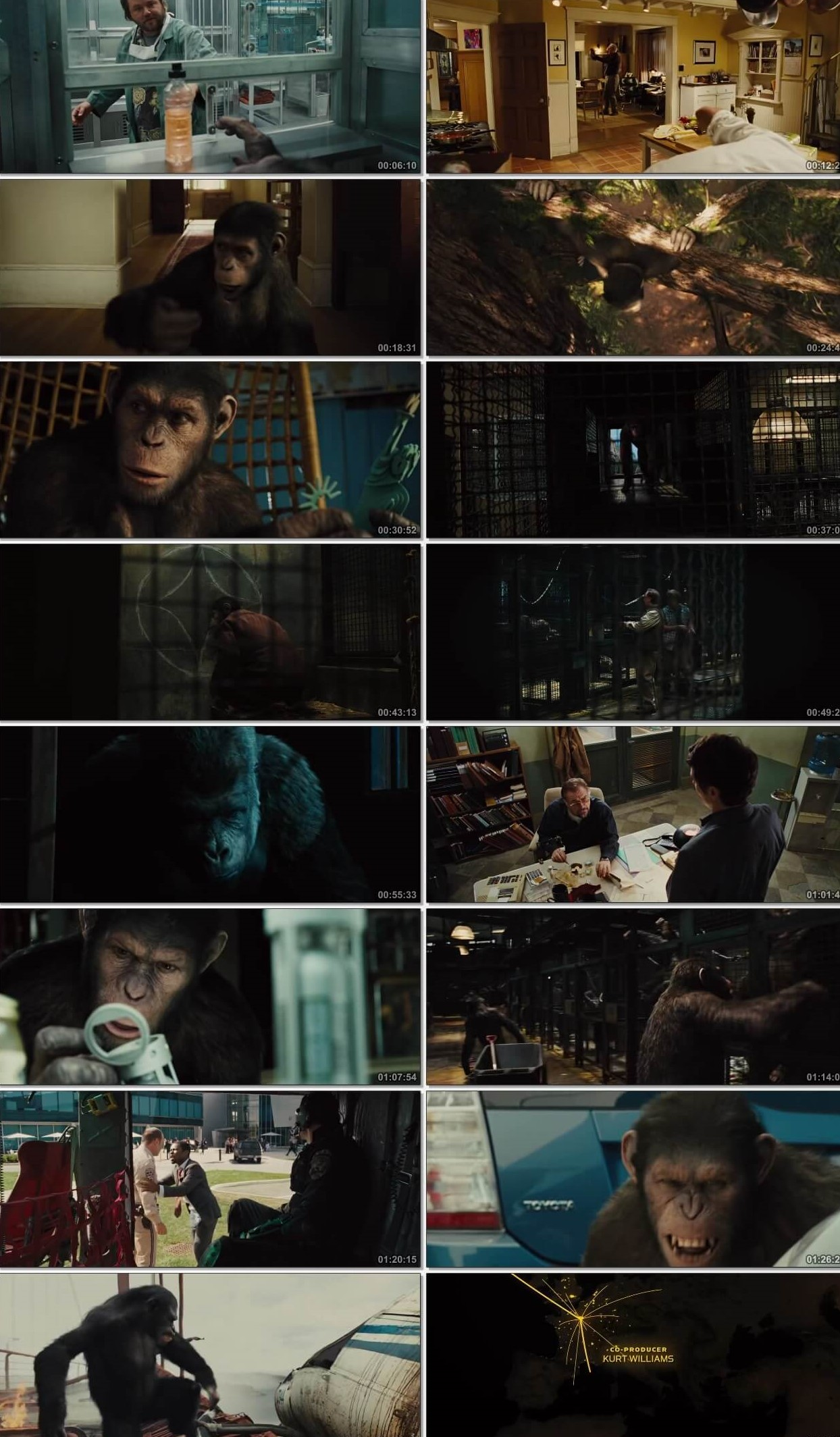 Rise of the Planet of the Apes 2011 Dual Audio Hindi BluRay Full Movie Download HD