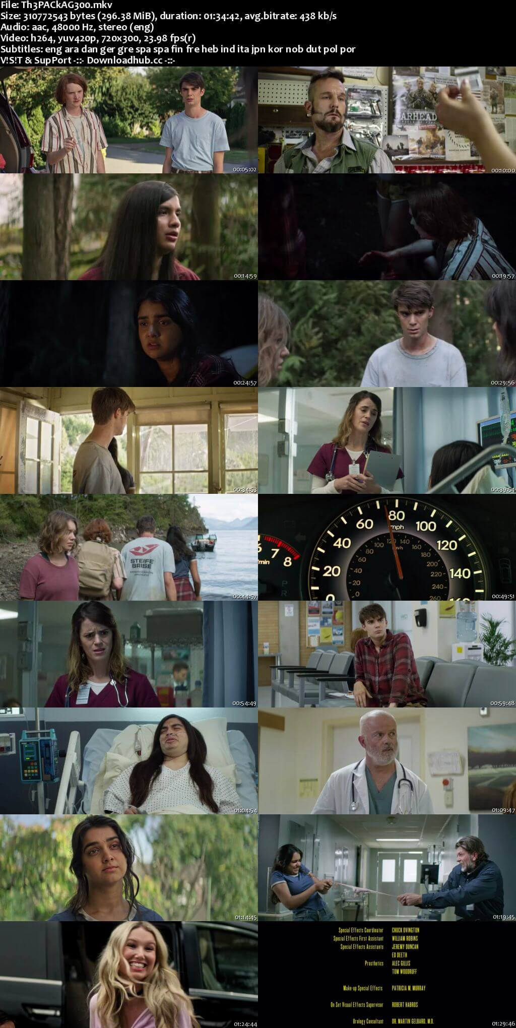 The Package 2018 English 300MB WEBRip 480p MSubs