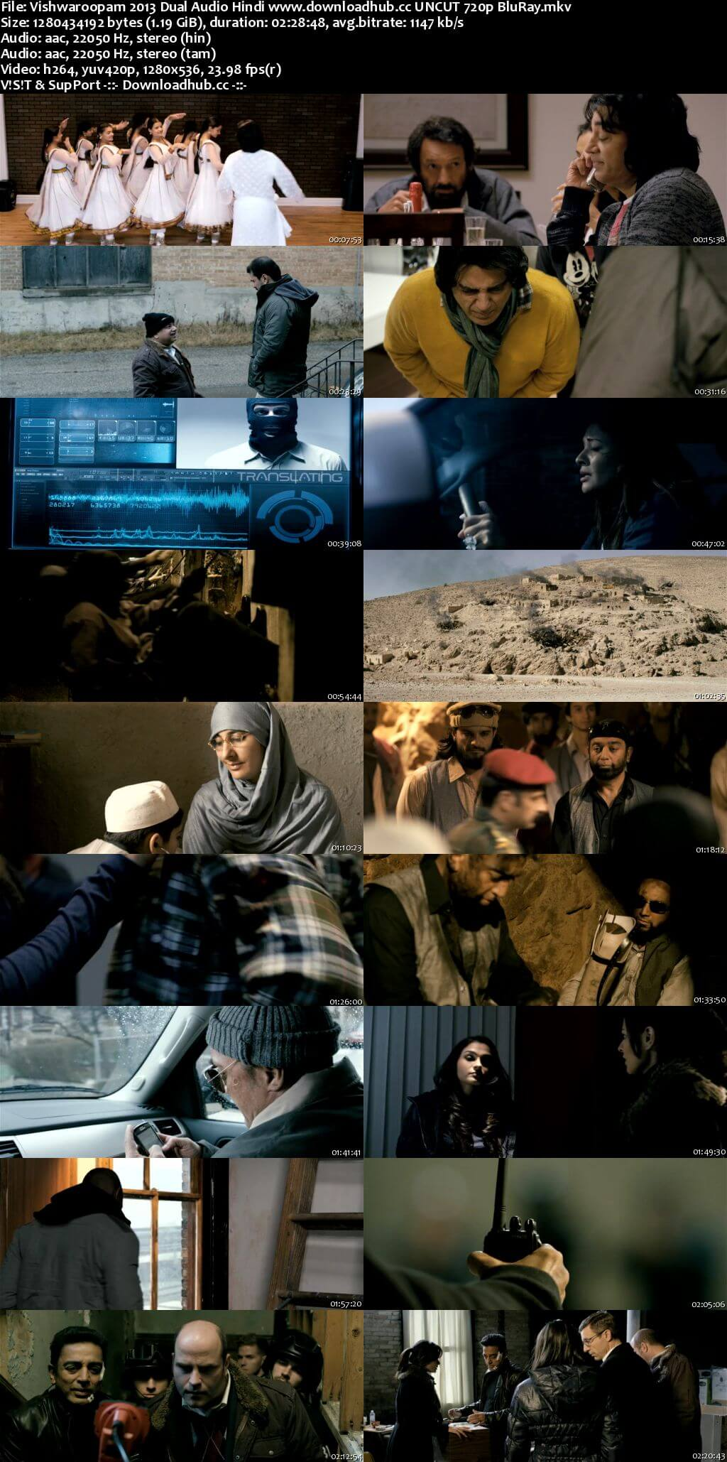 Vishwaroopam 2013 Hindi Dual Audio 720p UNCUT BluRay