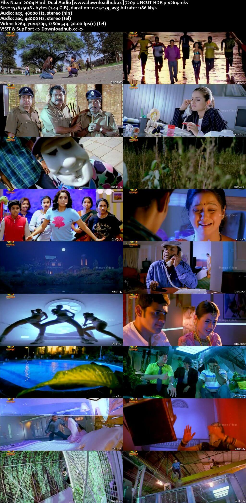 Naani 2004 Hindi Dual Audio 720p UNCUT HDRip
