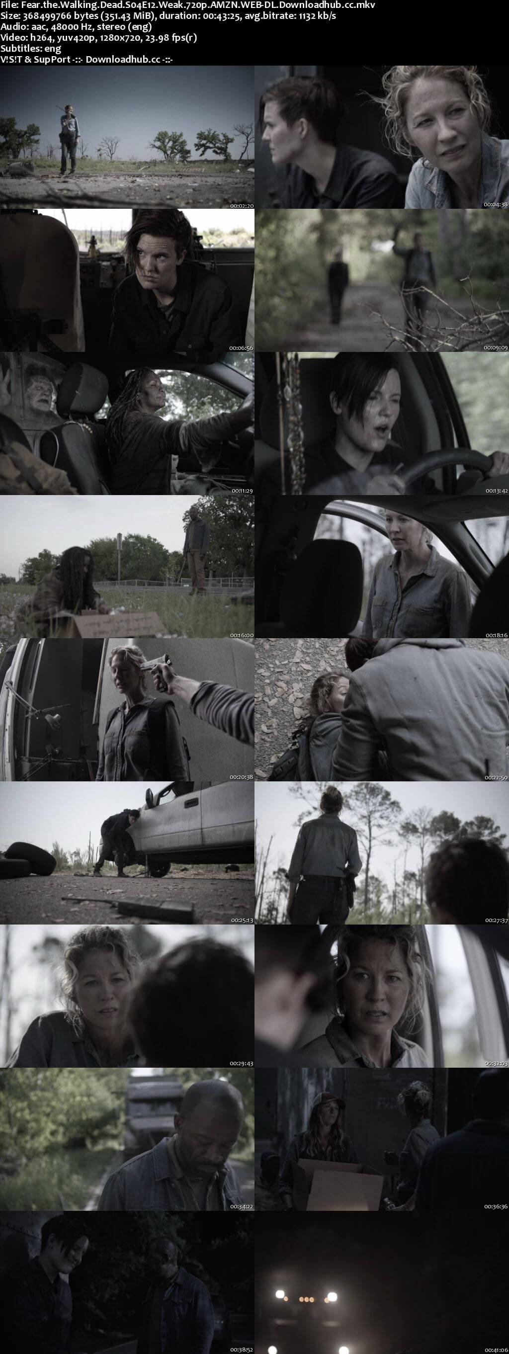 Fear the Walking Dead S04E12 350MB WEBRip 720p x264 ESubs