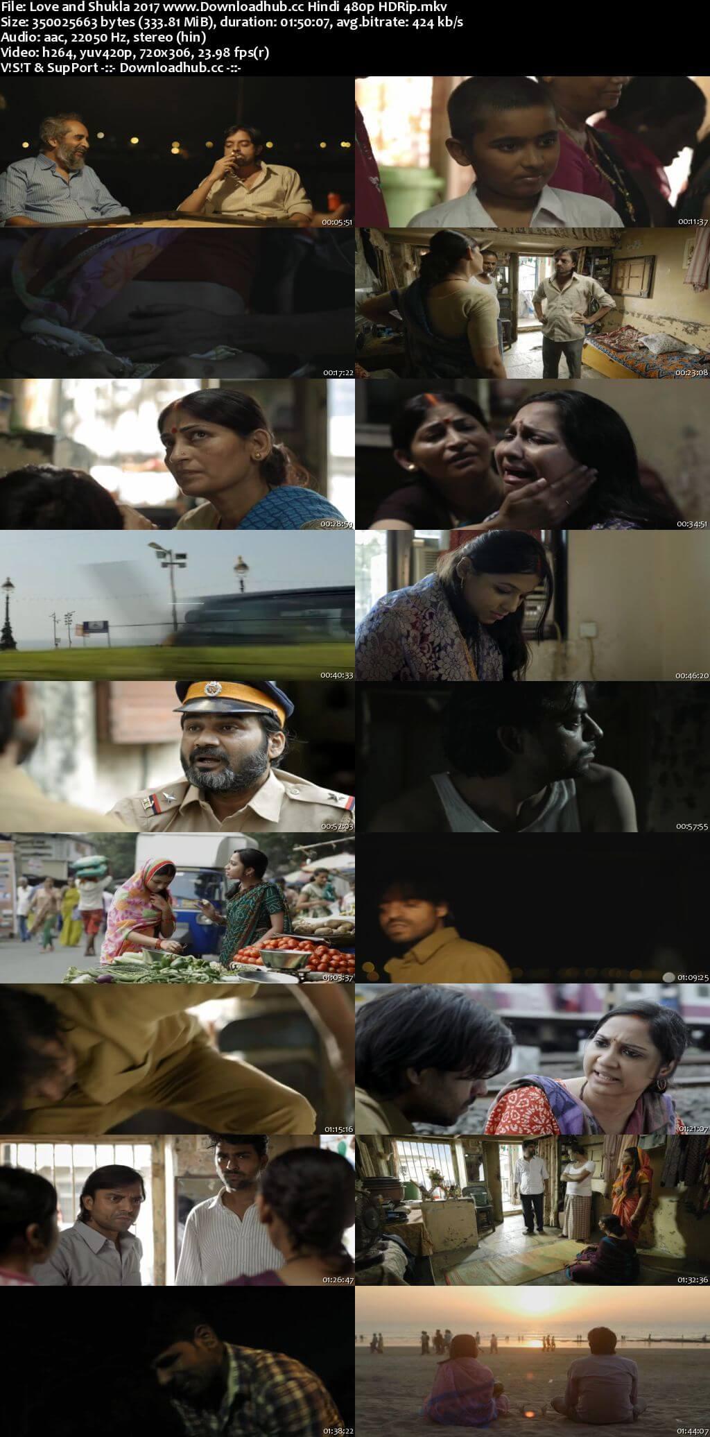 Love and Shukla 2017 Hindi 300MB HDRip 480p ESubs