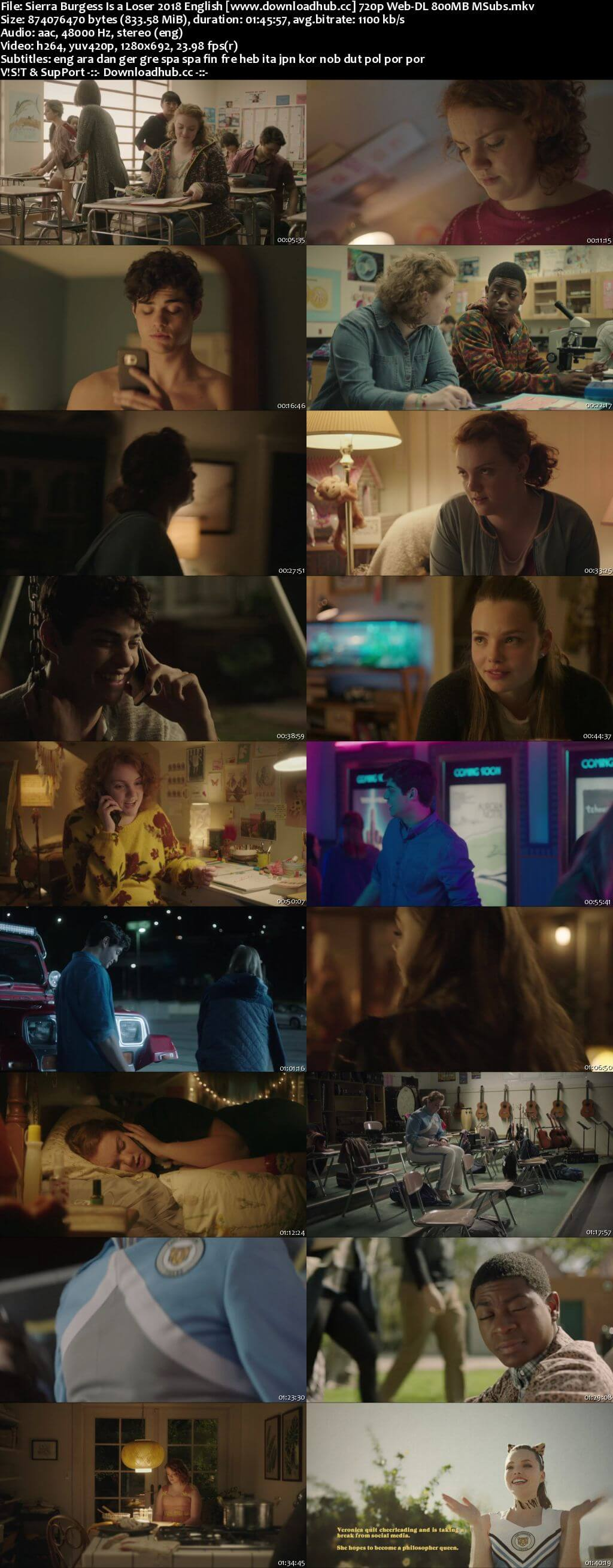 Sierra Burgess Is a Loser 2018 English 720p Web-DL 800MB MSubs