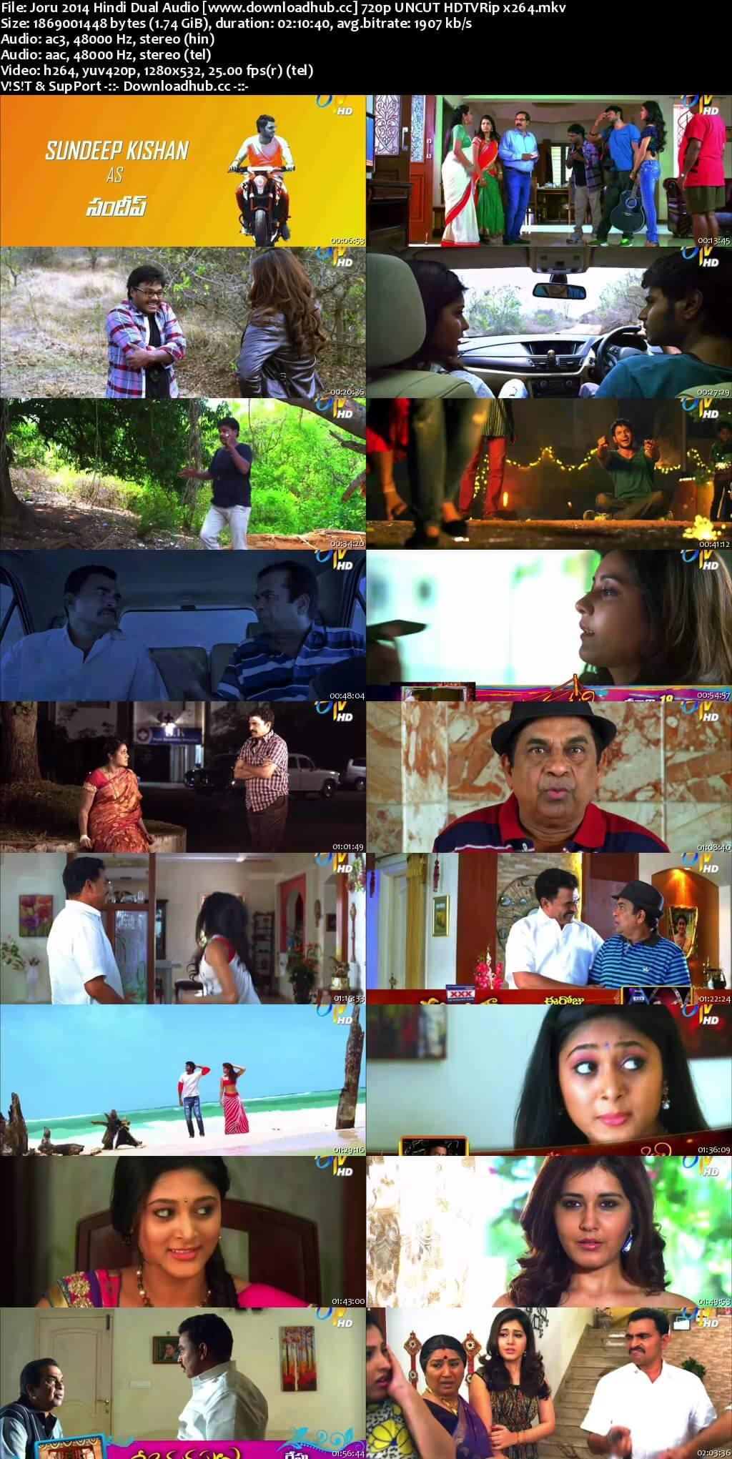 Joru 2014 Hindi Dual Audio 720p UNCUT HDTVRip x264