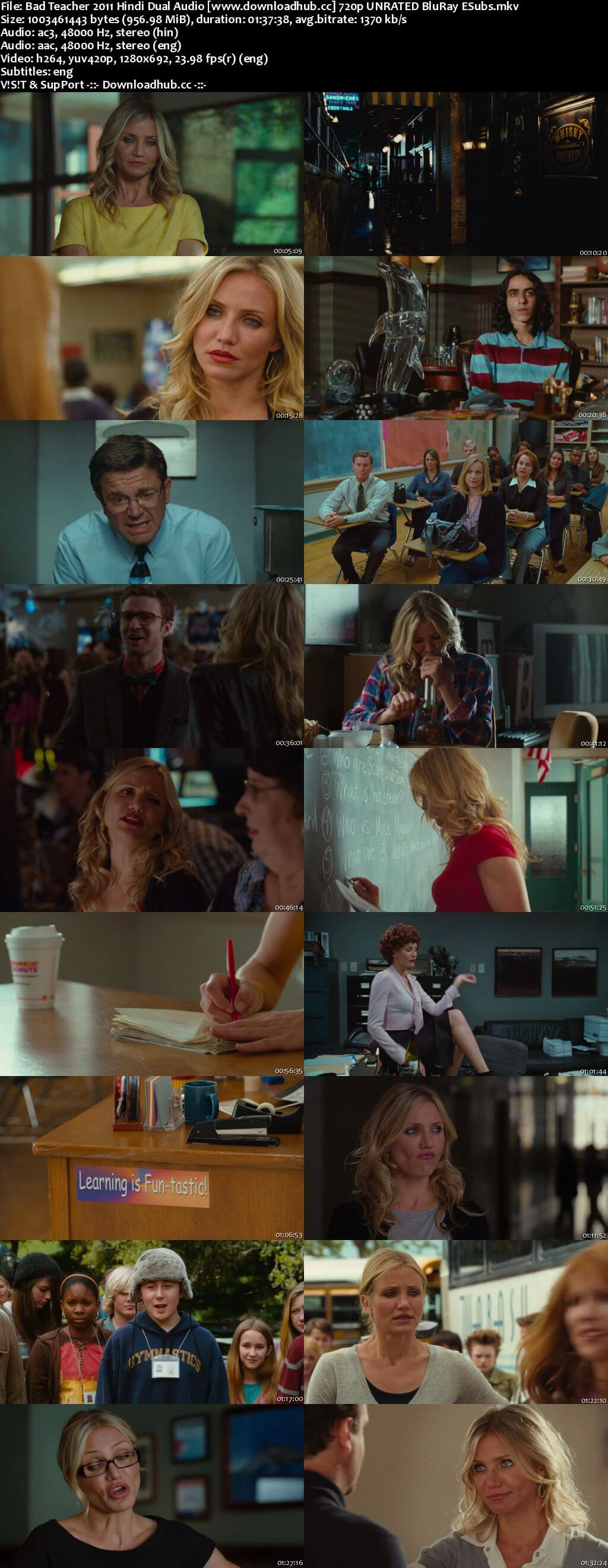 Bad Teacher 2011 Hindi Dual Audio 720p UNRATED BluRay ESubs