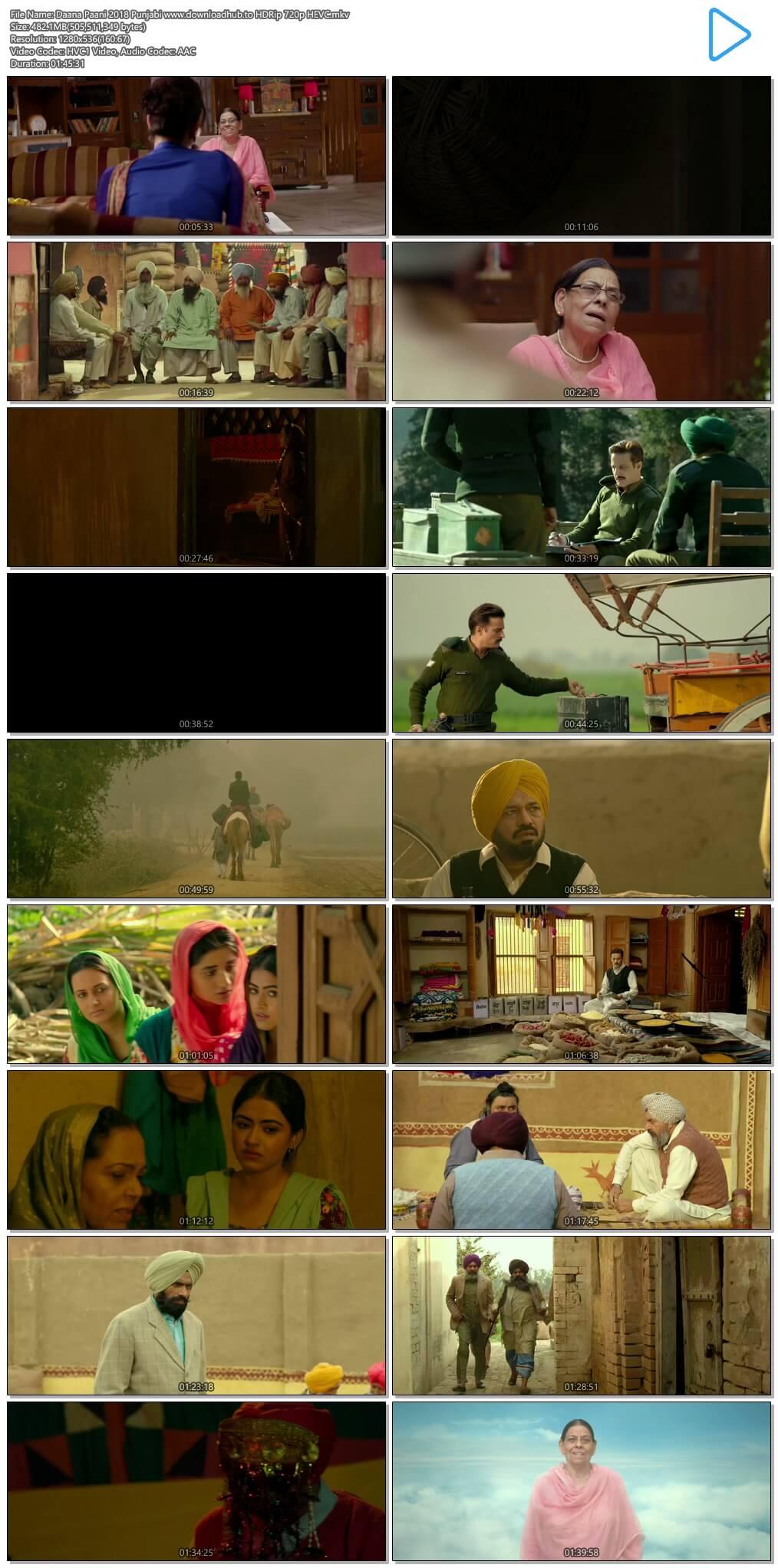 Daana Paani 2018 Punjabi 450MB HDRip 720p HEVC