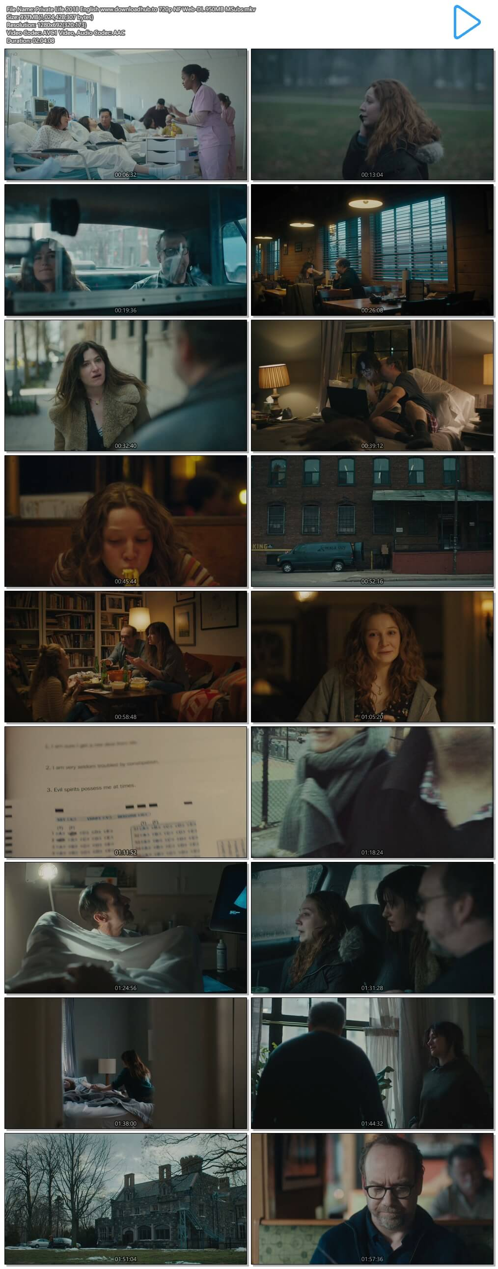Private Life 2018 English 720p NF Web-DL 950MB MSubs