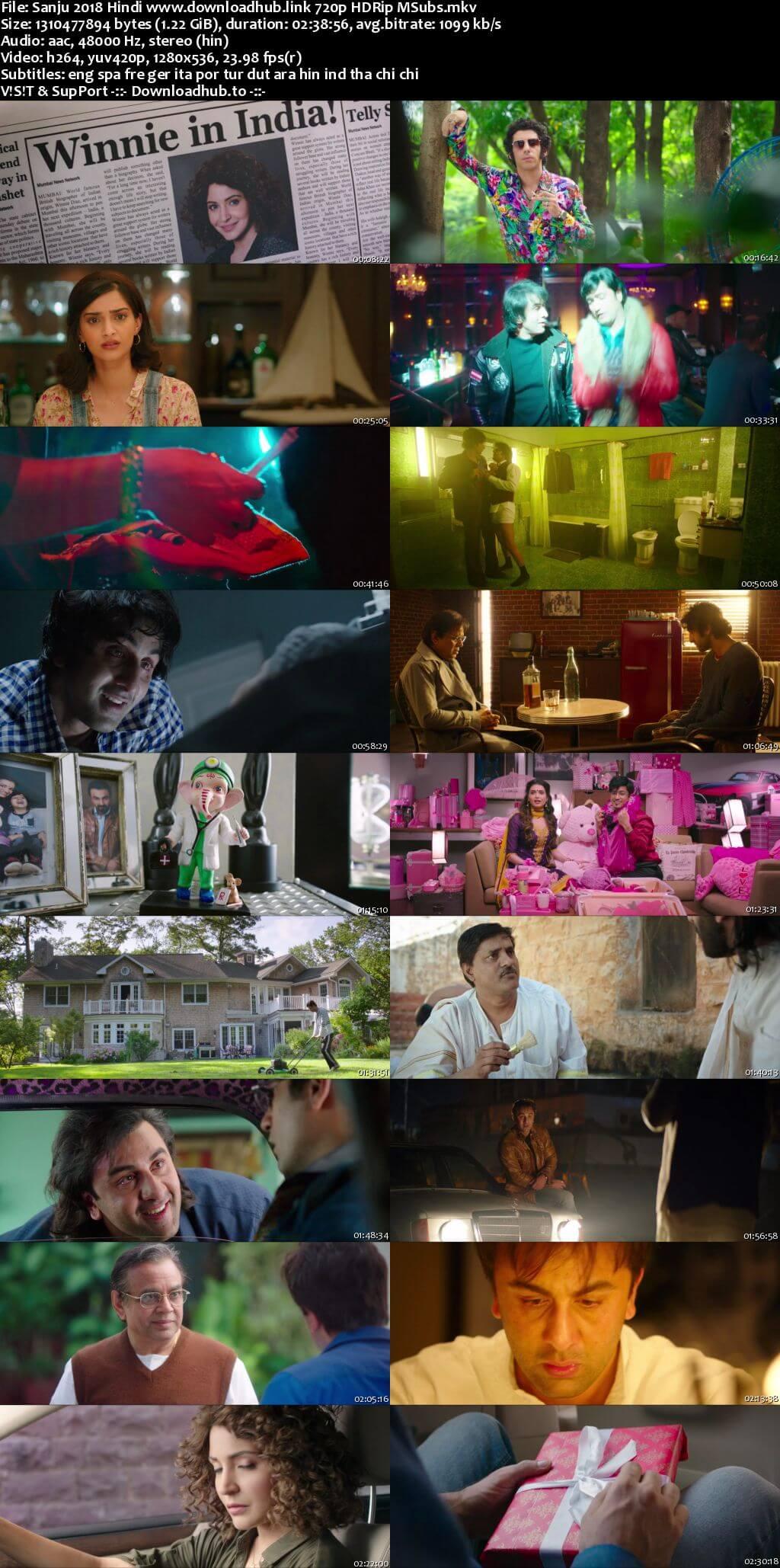 Sanju 2018 Hindi 720p HDRip MSubs