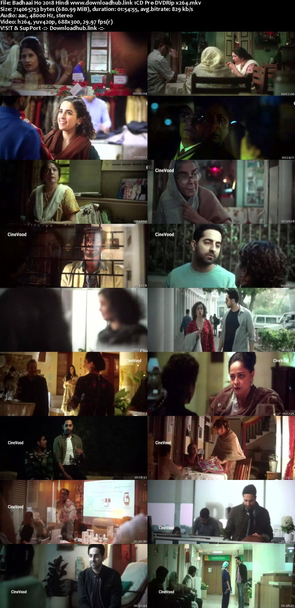 Badhaai Ho 2018 Hindi 700MB Pre-DVDRip x264