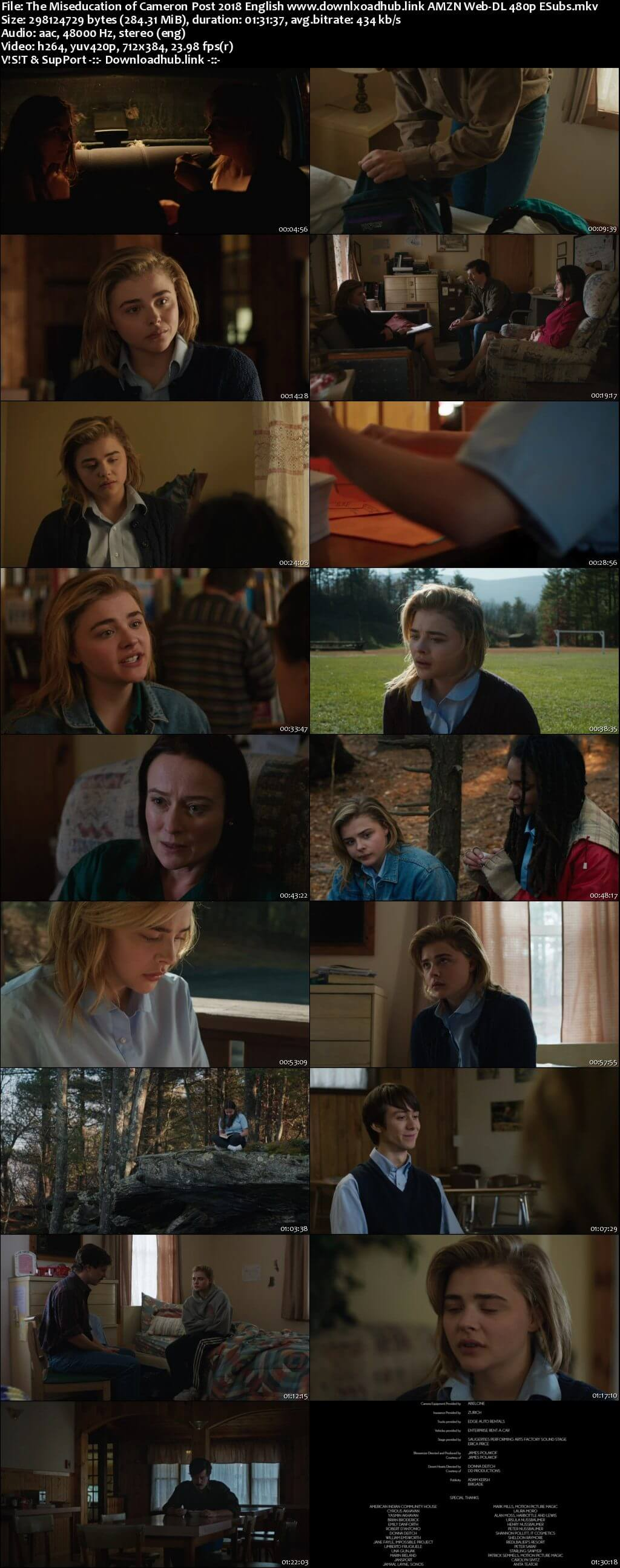 The Miseducation of Cameron Post 2018 English 280MB AMZN Web-DL 480p ESubs