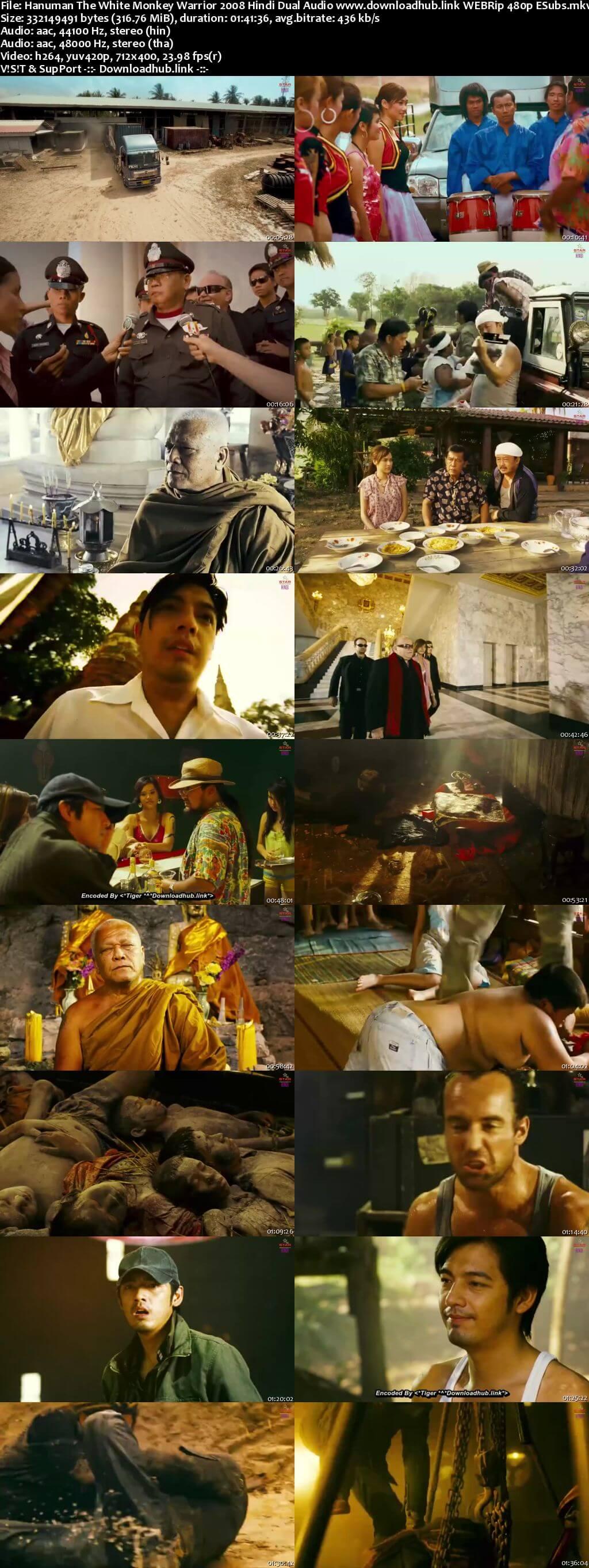 Hanuman The White Monkey Warrior 2008 Hindi Dual Audio 300MB WEBRip 480p ESubs