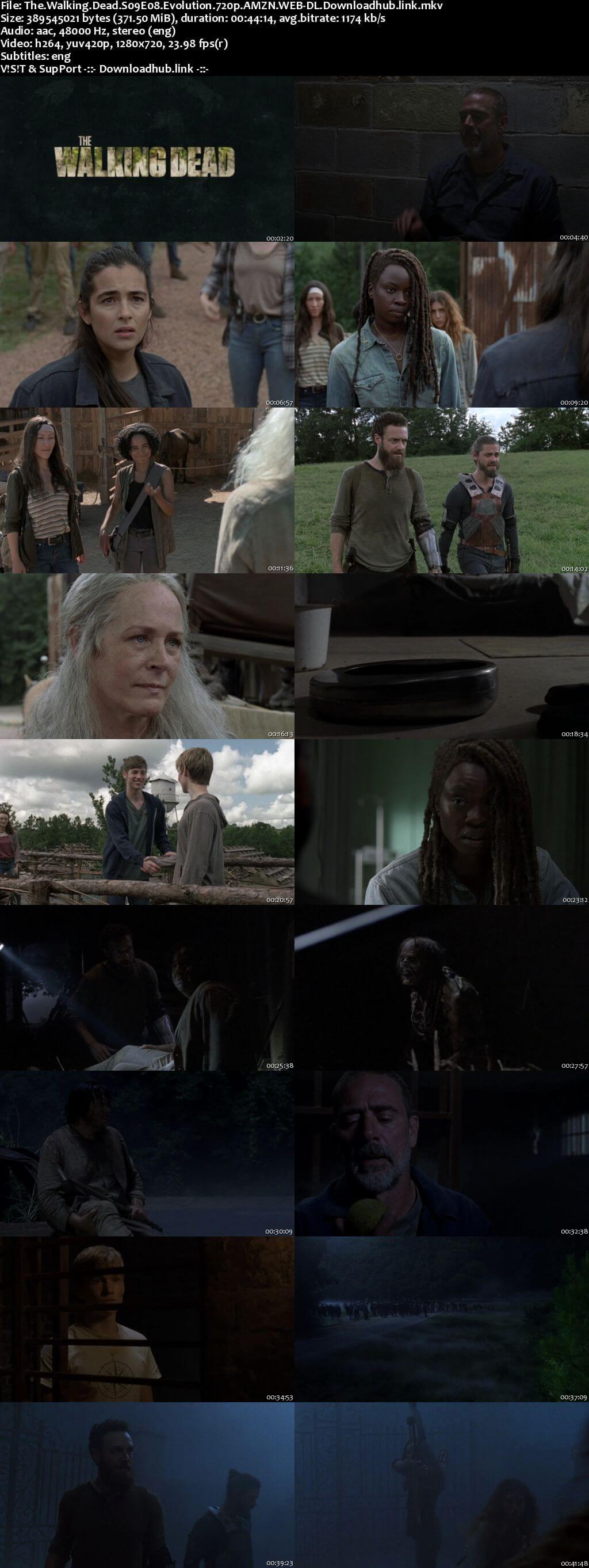 Walking Dead 720p web dl