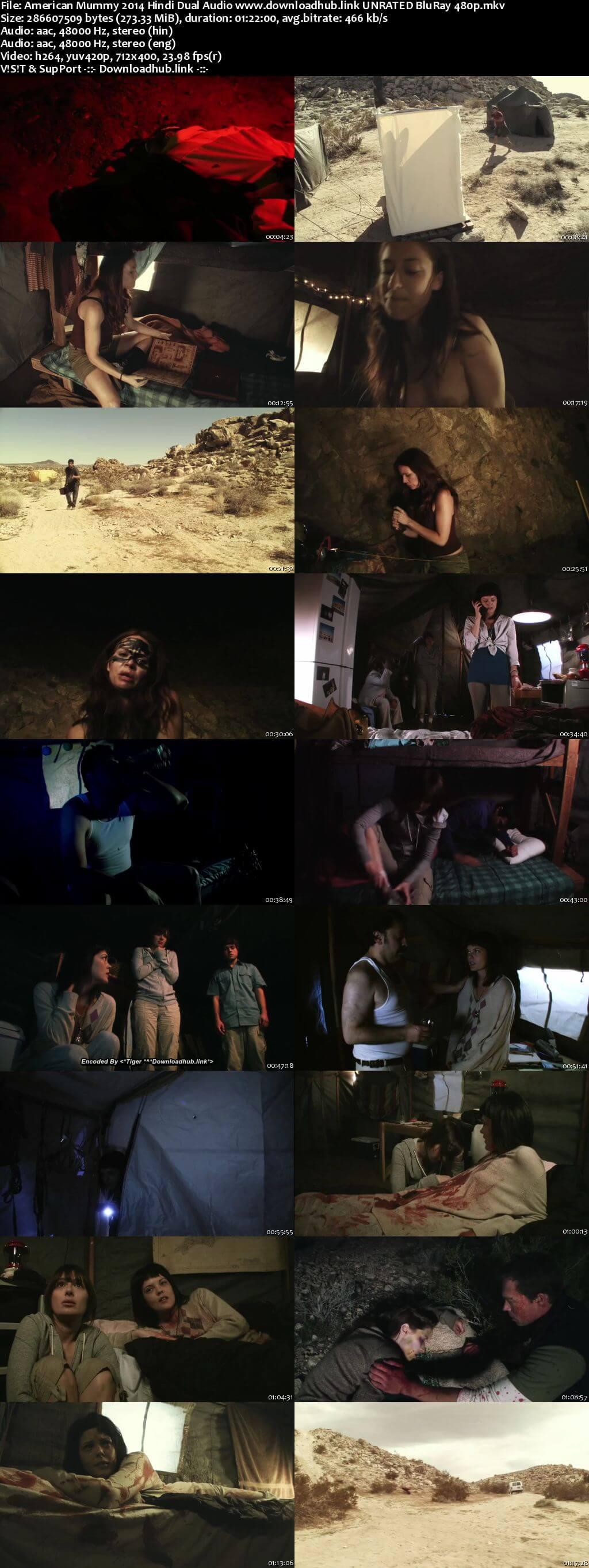 American Mummy 2014 Hindi Dual Audio 270MB UNRATED BluRay 480p