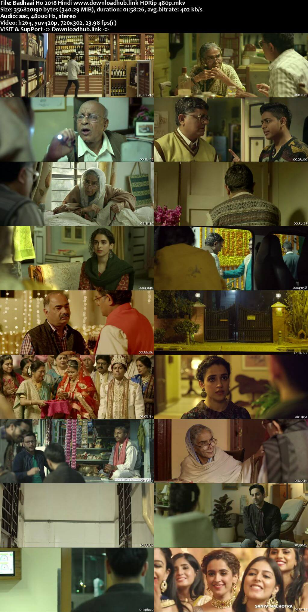 Badhaai Ho 2018 Hindi 300MB HDRip 480p