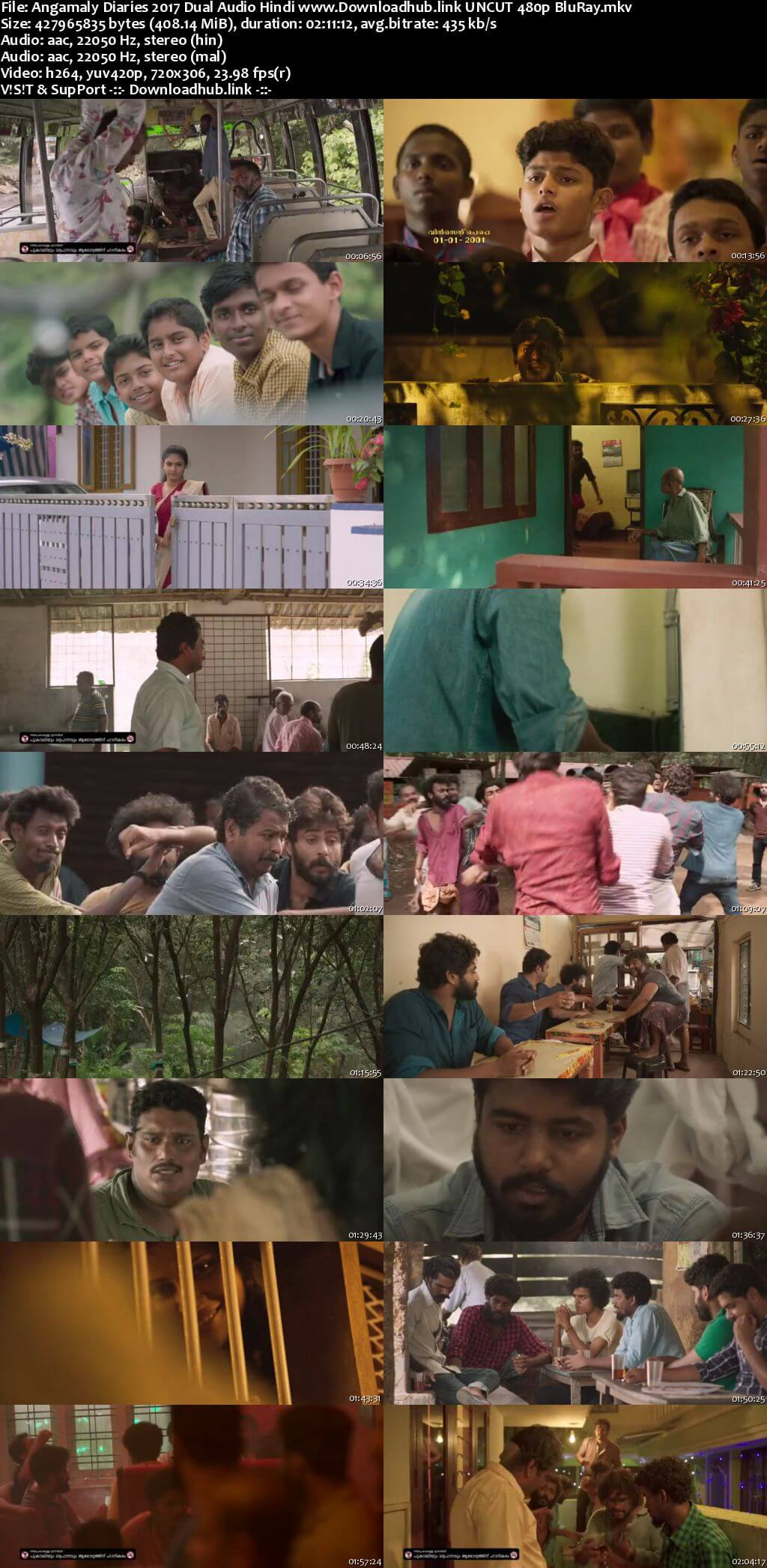 Angamaly Diaries 2017 Hindi Dual Audio 400MB UNCUT BluRay 480p ESubs