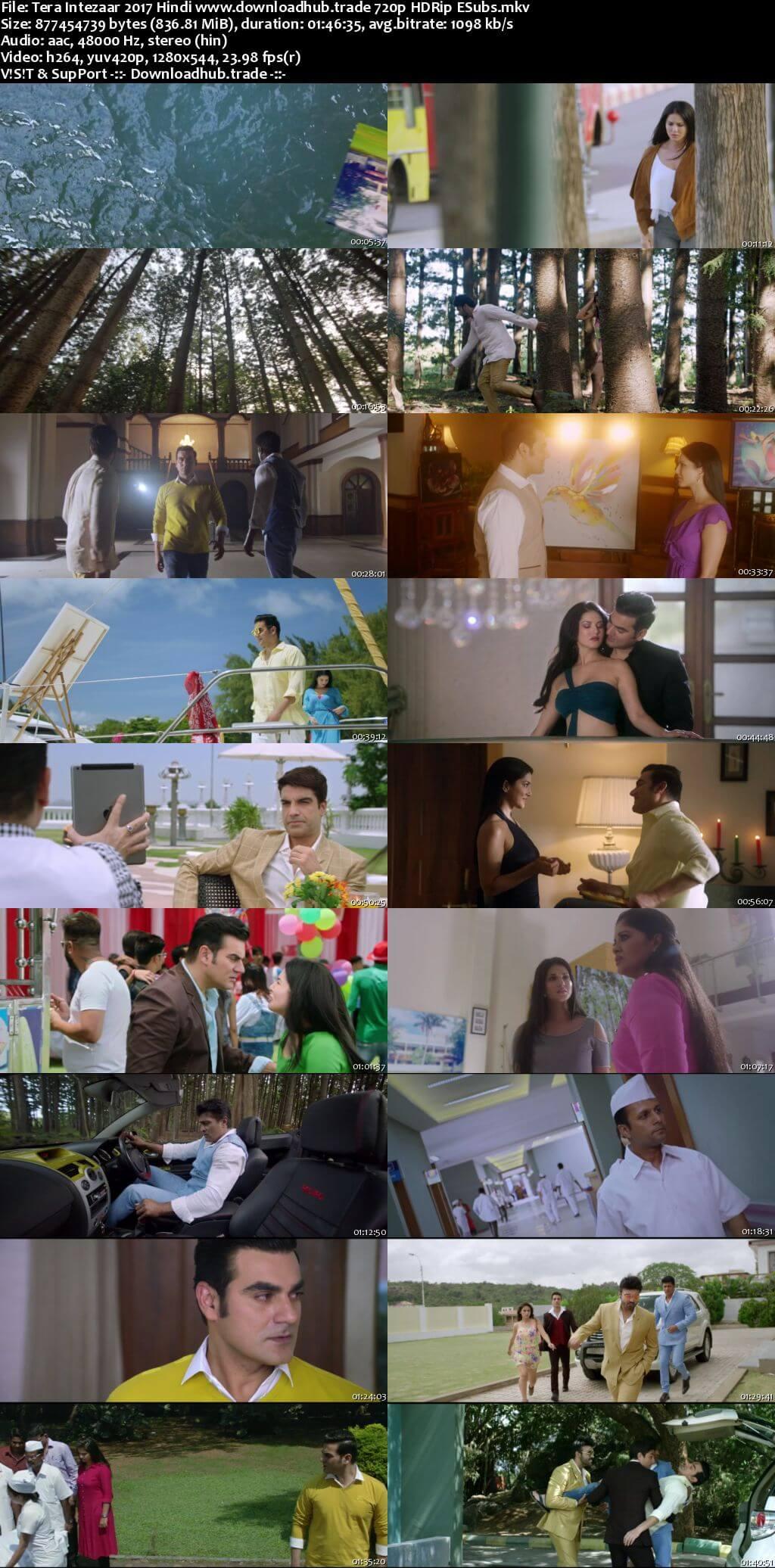 Tera Intezaar 2017 Hindi 720p HDRip ESubs