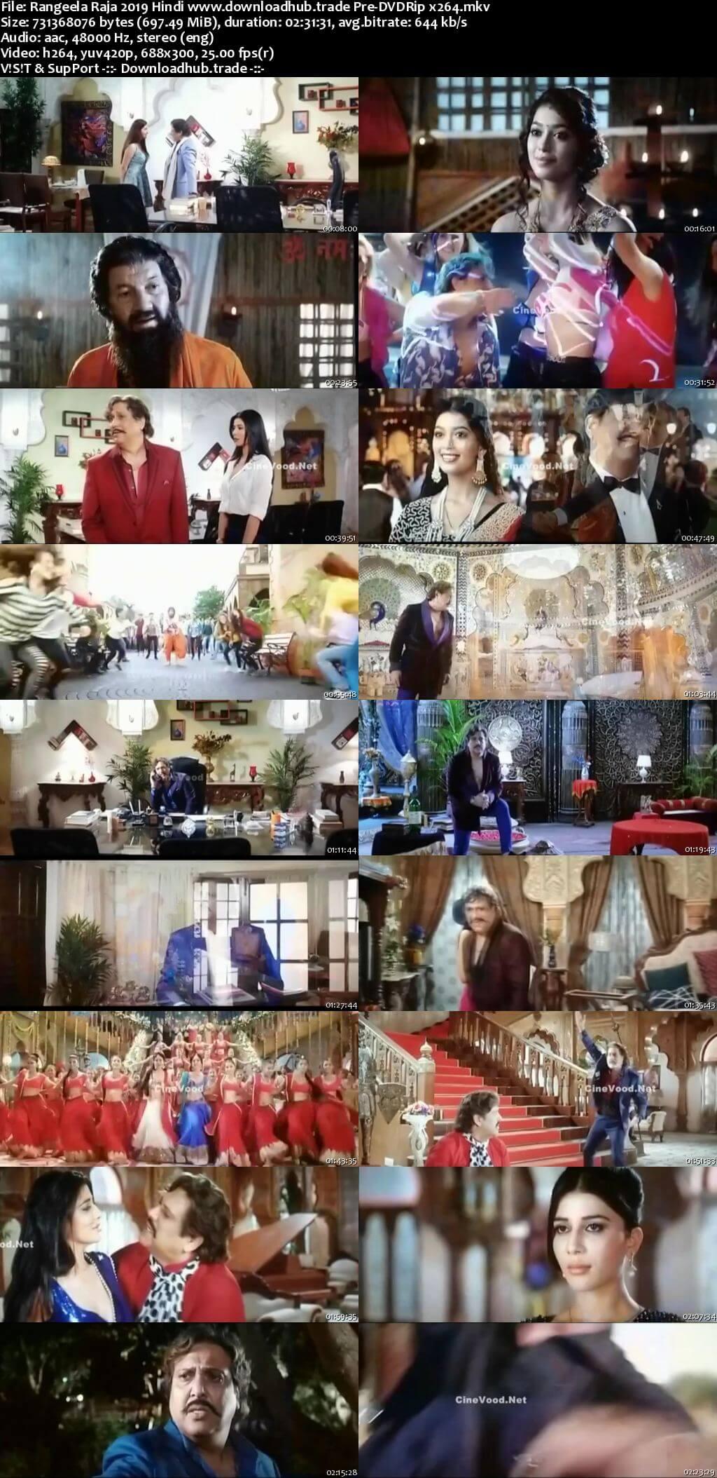 Rangeela Raja 2019 Hindi 700MB Pre-DVDRip x264