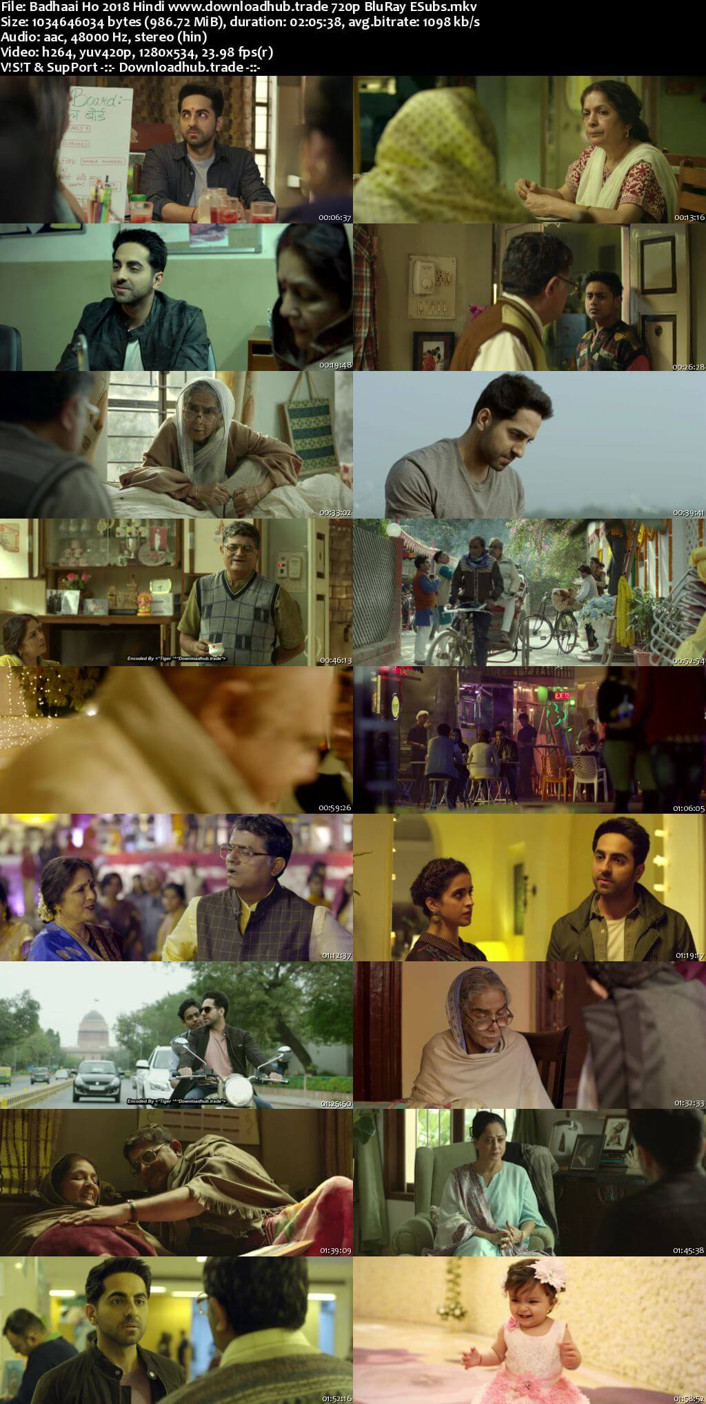 Badhaai Ho 2018 Hindi 720p BluRay ESubs