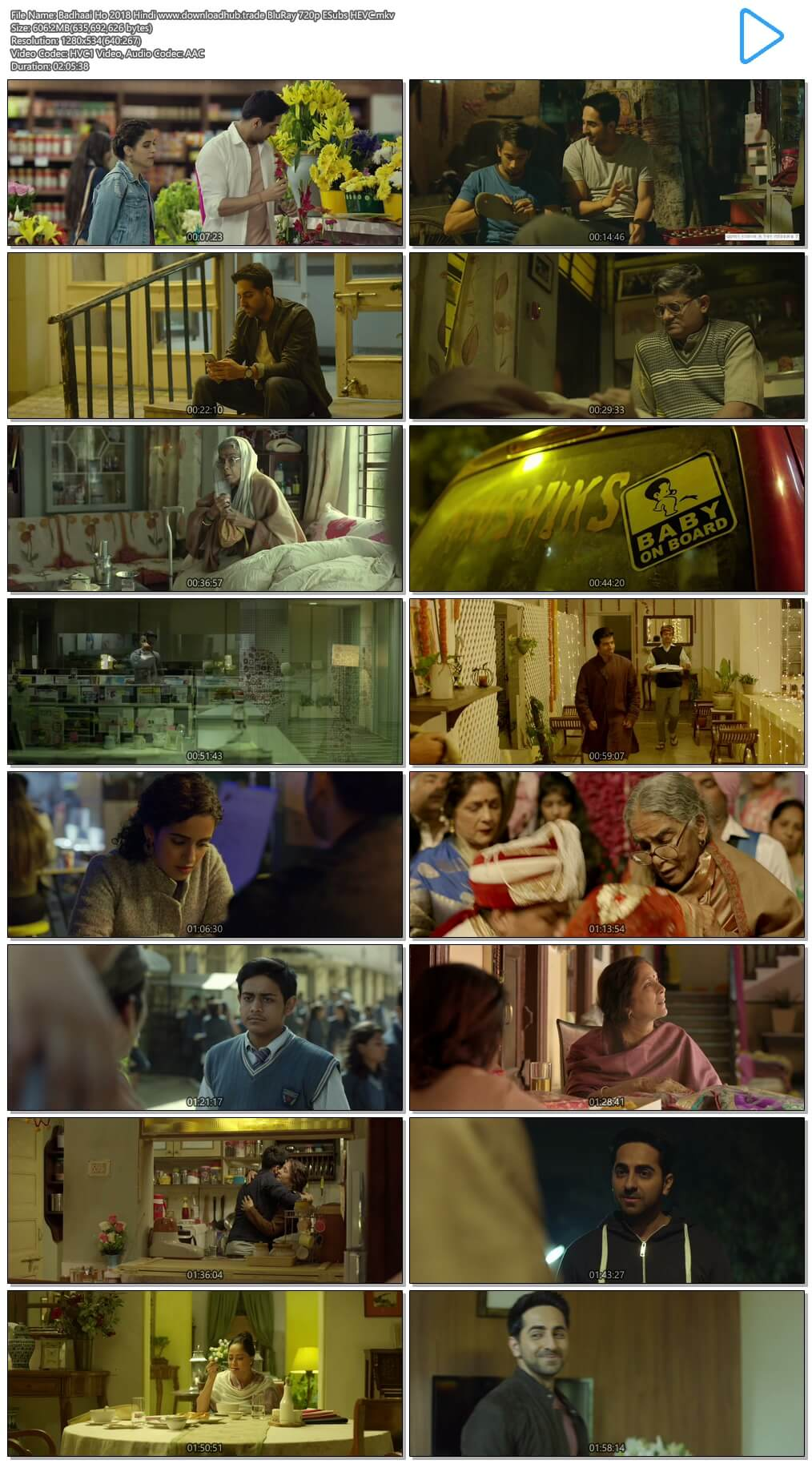 Badhaai Ho 2018 Hindi 600MB BluRay 720p ESubs HEVC