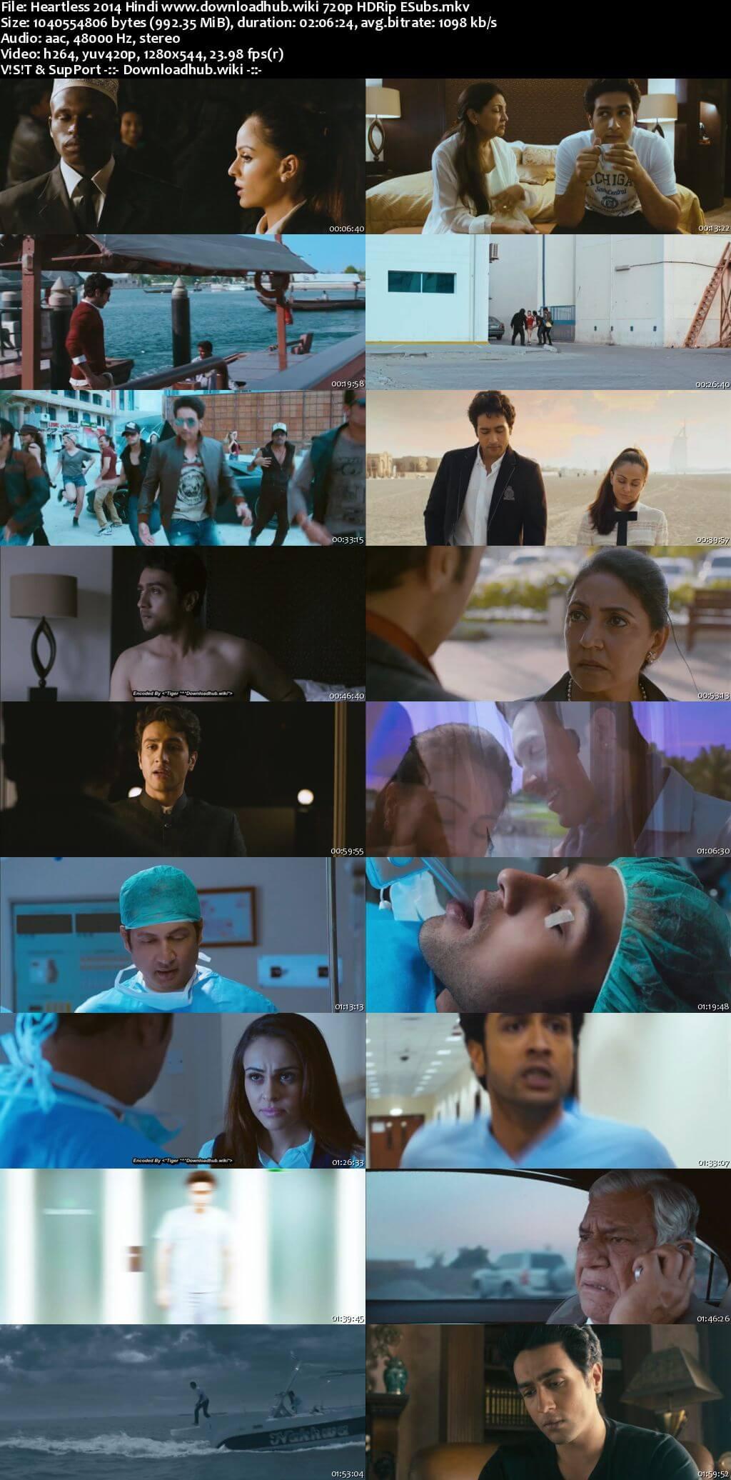Heartless 2014 Hindi 720p HDRip ESubs