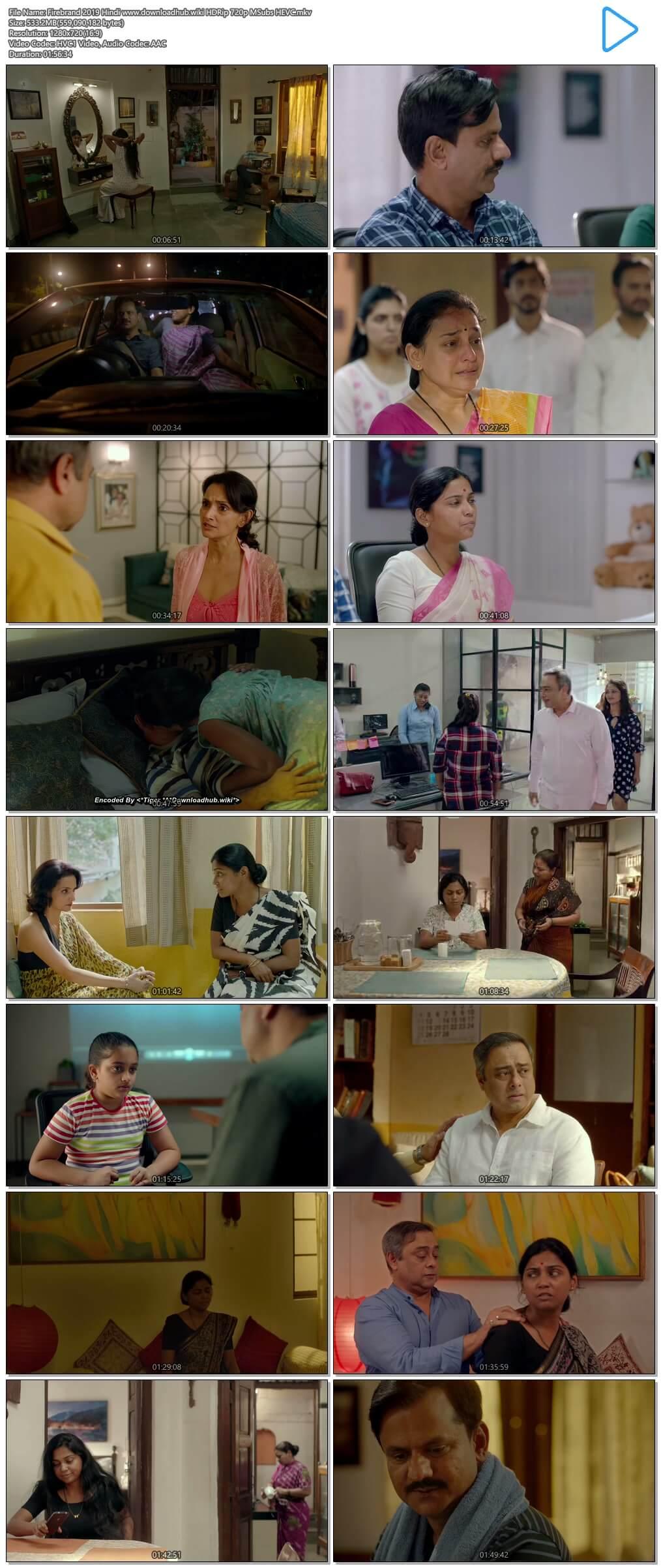 Firebrand 2019 Hindi 500MB HDRip 720p MSubs HEVC