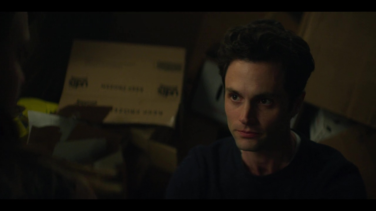 You S02 (2019) Netflix Dual Audio [Hindi – English] x264 AAC